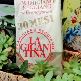 Parmesan cheese – The gigantina-